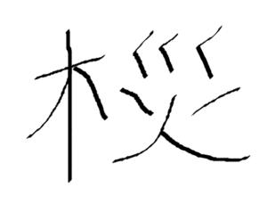 私が書いた間違った「桜」の字
