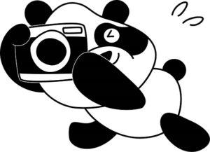 デジカメを持って焦るパンダ